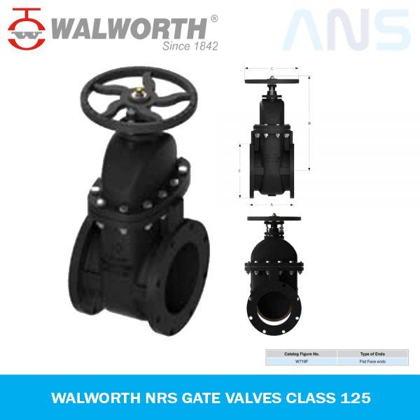 Gambar 1 WALWORTH NRS Gate Valve Class 125