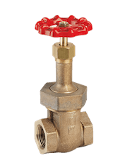 Union Bonnet Gate Valve