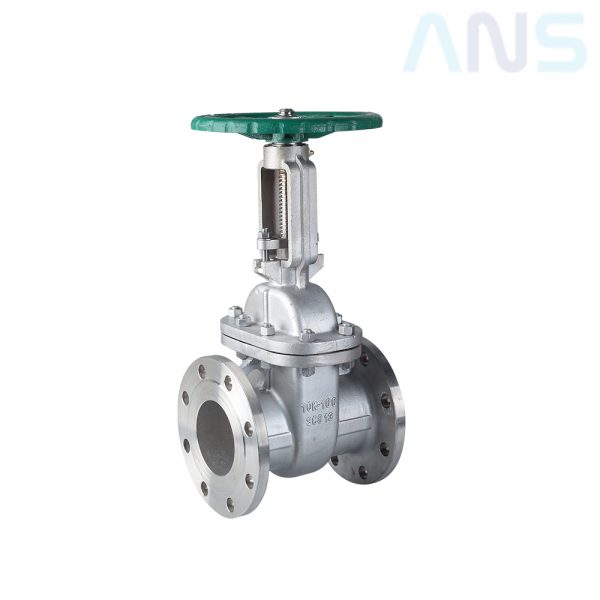 Foto ANS Forged Steel Gate Valve
